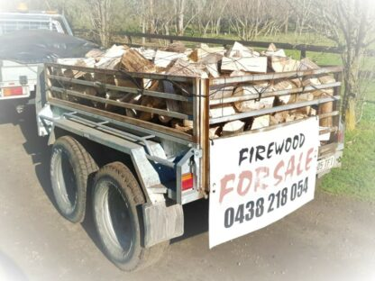 BlueGum Firewood Caged Trailer
